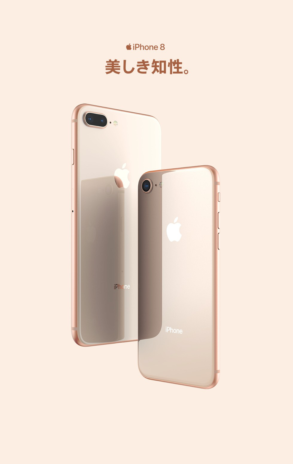 iPhone 8・iPhone 8 Plus | iPhone | au