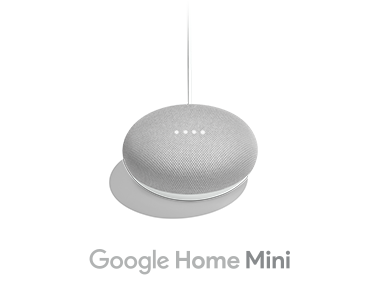 Google Home Mini チョーク