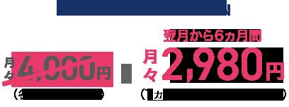 auフラットプラン20N 翌月から6カ月間月々2,980円