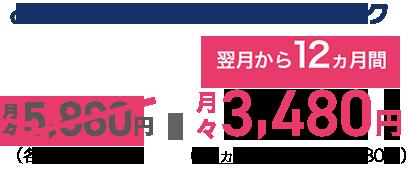 auデータMAXプランNetflixパック 翌月から12カ月間月々3,480円