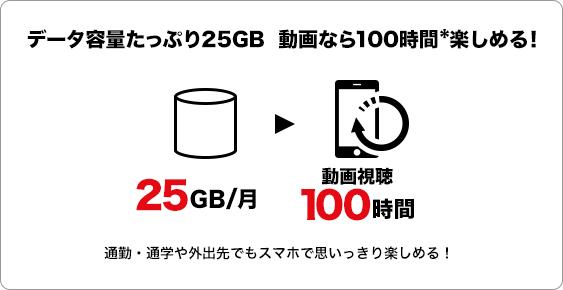 データ容量たっぷり25GB 動画なら100時間*楽しめる!
